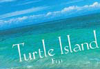 Turtle Island brochure cover